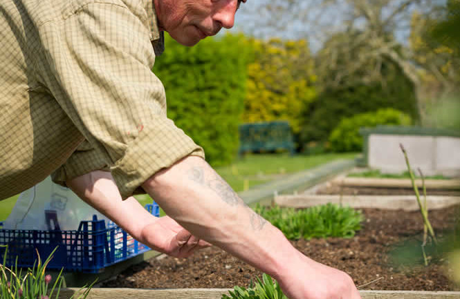 Tyn Rhos Gardeners At Work