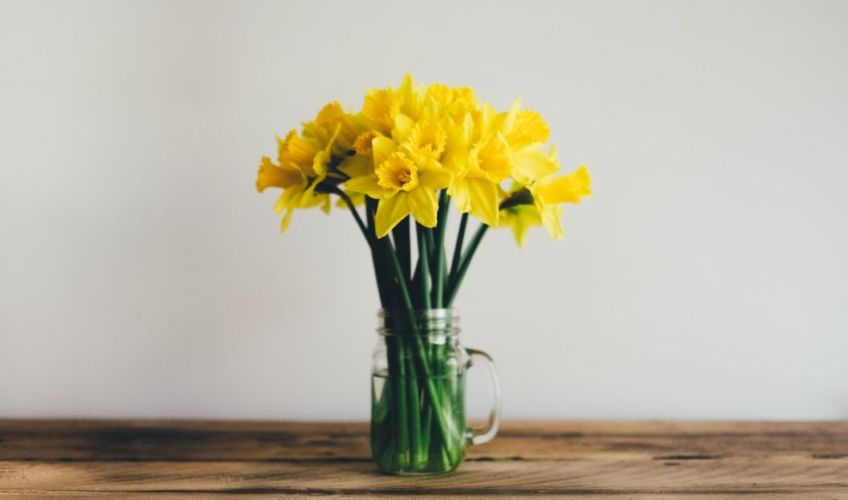 spring super saver